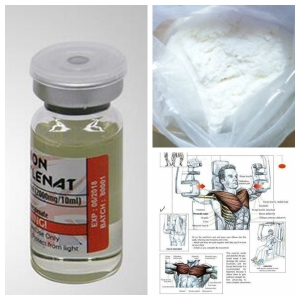 Buy Testosterone Sustanon 250 Drugs