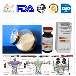Buy Testosterone Acetate Drugs